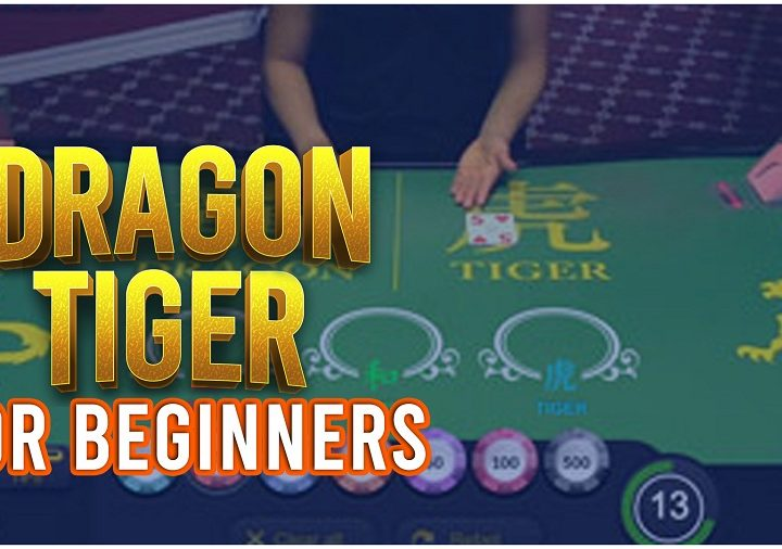 Dragon Tiger - A Beginners Guide