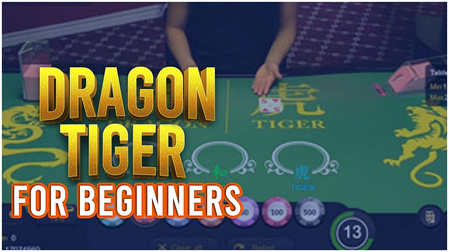 Dragon Tiger: A Beginners Guide